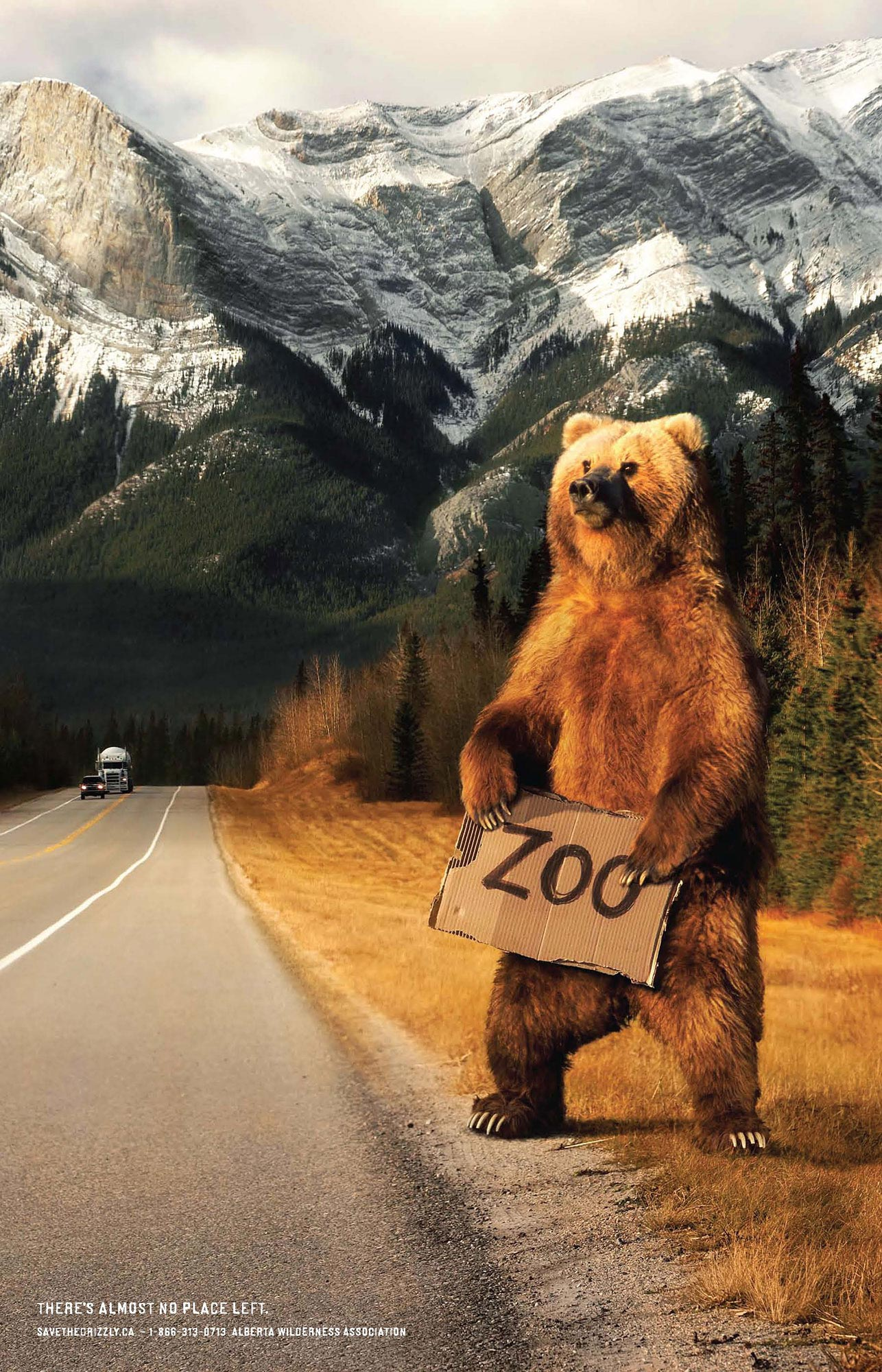 Pages-from-griz_ZOO_poster_18x28